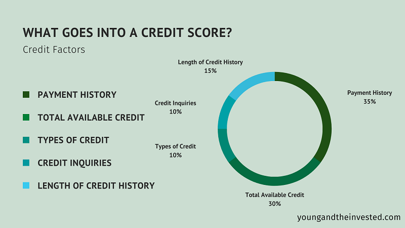 what goes into a credit score infographic
